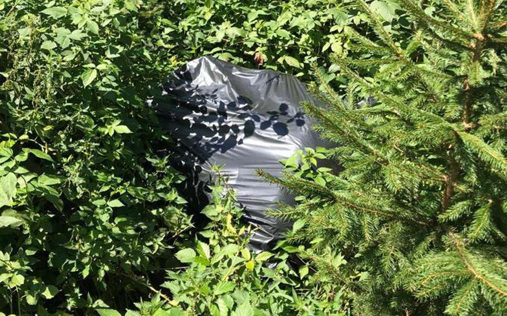 Müllsack im Wald