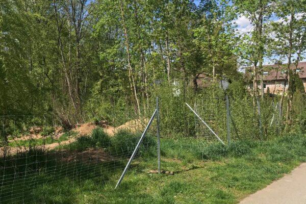 Sachbeschädigung Gemeindewald